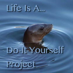 Life Is A Do It Yourself Project